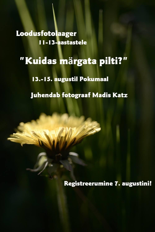 Noorte loodusfotolaager 13.-15. augustil Pokumaal