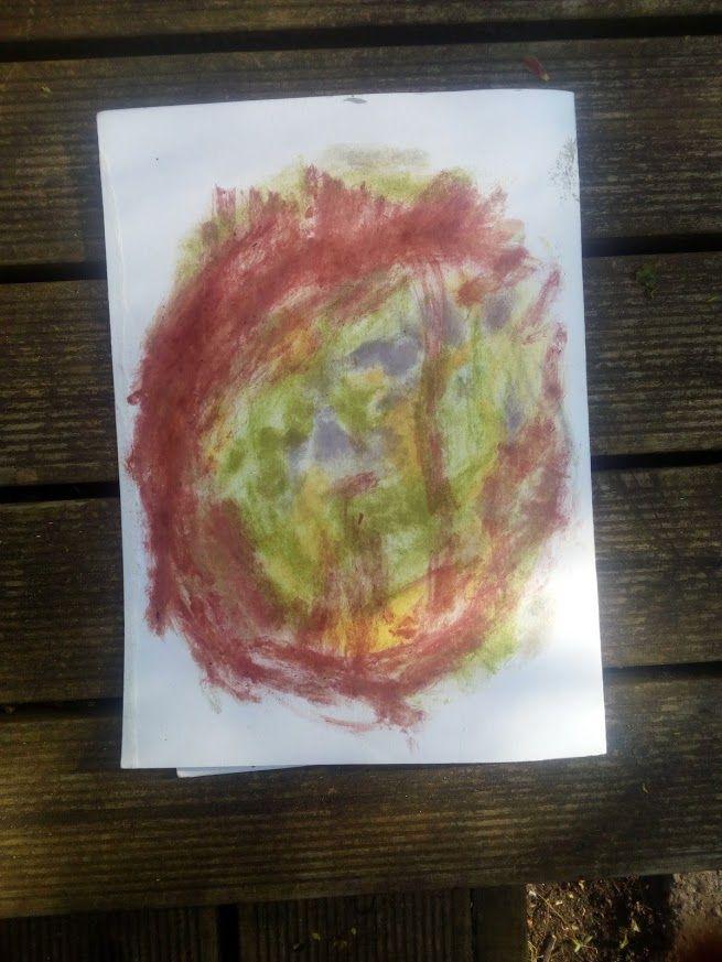 Värvi saab ka taimi lihtsalt paberile hõõrudes