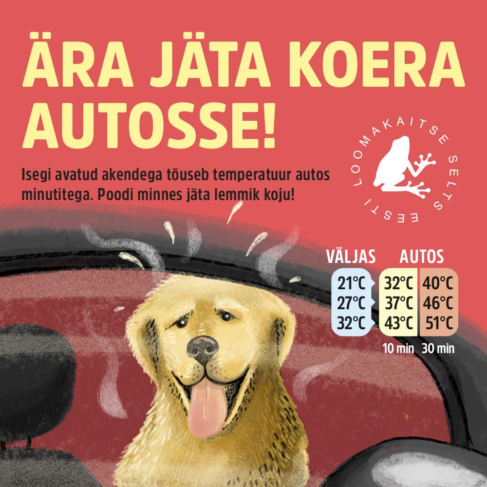 Ära jäta lemmiklooma suve kuumaga autosse