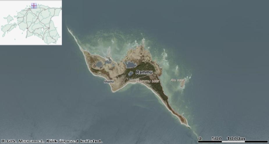 Vana külakoht jooksis mööda pildil vasakul pool ääres olevat läänerannikut, mida meri aasta-aastalt ära kulutab. Põhjarannikul (pildil ülal) leidub kolm soolast järve ning saare keskel metsa rüpes magedaveeline järv. Idaranniku ligidal asub lage Allu (kaardil ekslikult Alu) saar, mille kaldale meri uhtus 19. sajandil vaalakorjuse. Allikas: Maa-ameti Geoportaal.