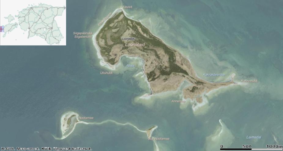 Põhiplaanilt neerukujulist Loonalaidu iseloomustab lahesopp keskosas ja selle serva jääv Ullunuki neem. Kagunurk on madal ja kannab nime Annemaa. Läheduses paiknevad loodusreservaat Nootamaa ja alles 1980. aastatel tekkinud Uus-Nootamaa, millest lõuna poole jääb Salavamaa (kaardilt väljas). Allikas: Maa-ameti Geoportaal.