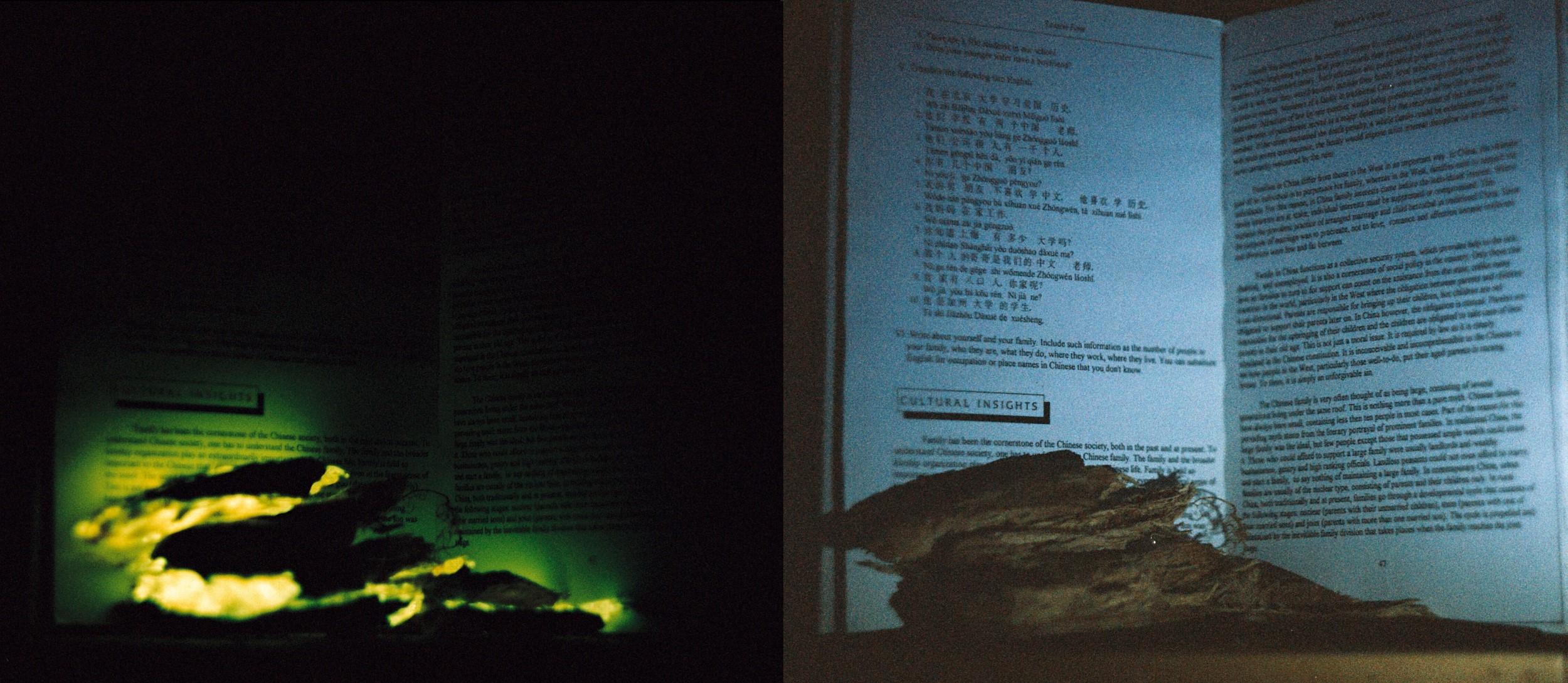 Fotod: Raamatu ette asetatud helendavad kõdupuidu tükid - nende valgusest jääb lugemiseks ikkagi natuke väheks, kuid mõne suurema sõna loeb ehk ära. Valgustatuna taskulambiga (paremal) ja pimedas (vasakul) - säriaeg ~3h.