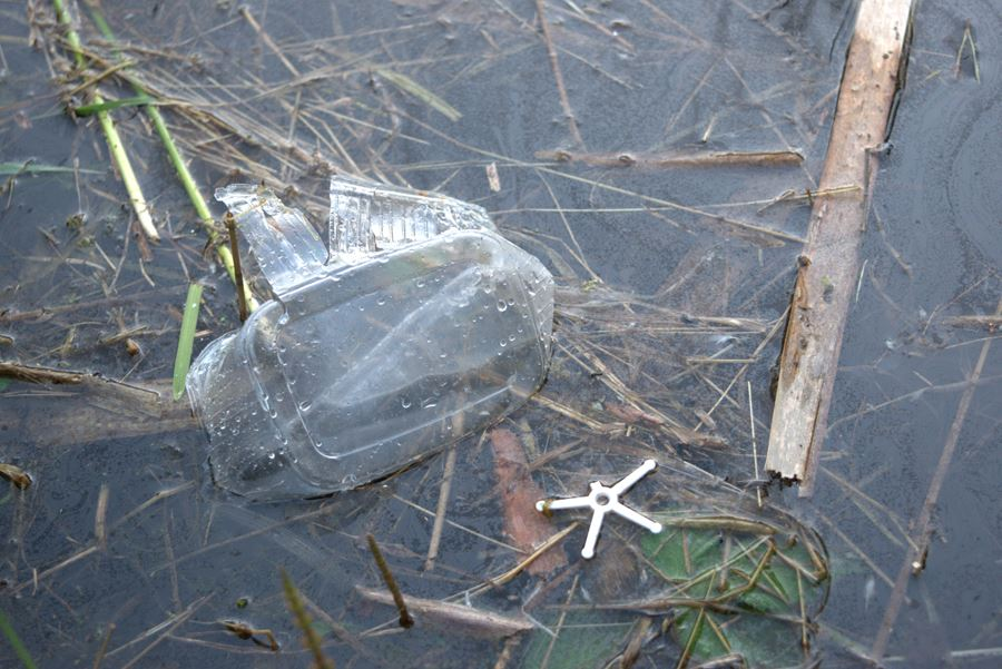 Euroopa Liit soovib keelustada plastist ühekordseid nõud