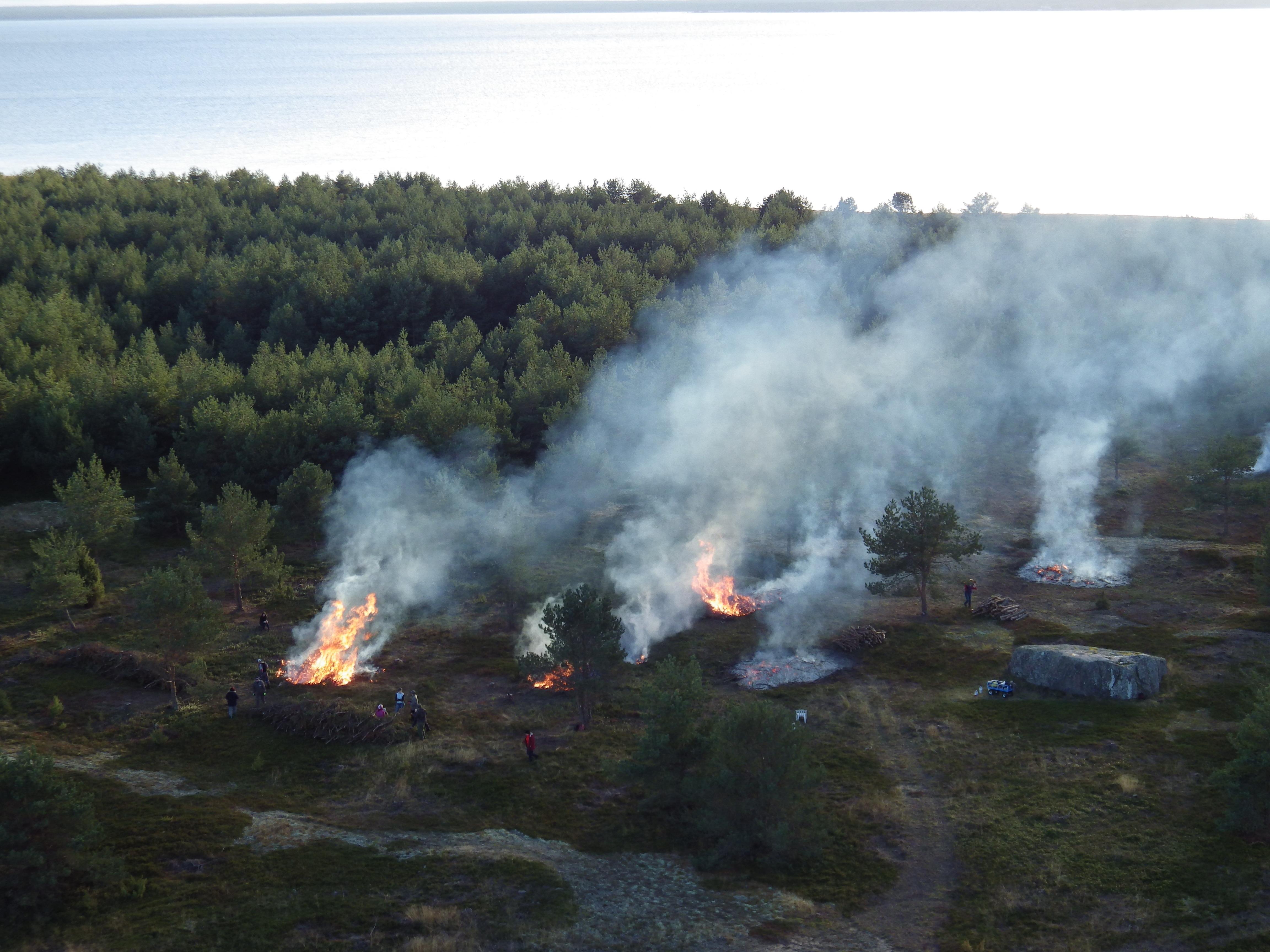 Sügisene oksahunnikute põletamine rändrahnu kõrval oleval talguplatsil 2014. aastal. Sellist ülevaatliku pilti kõrgusest enam teha ei saa, sest … (Foto: Eero Väin).