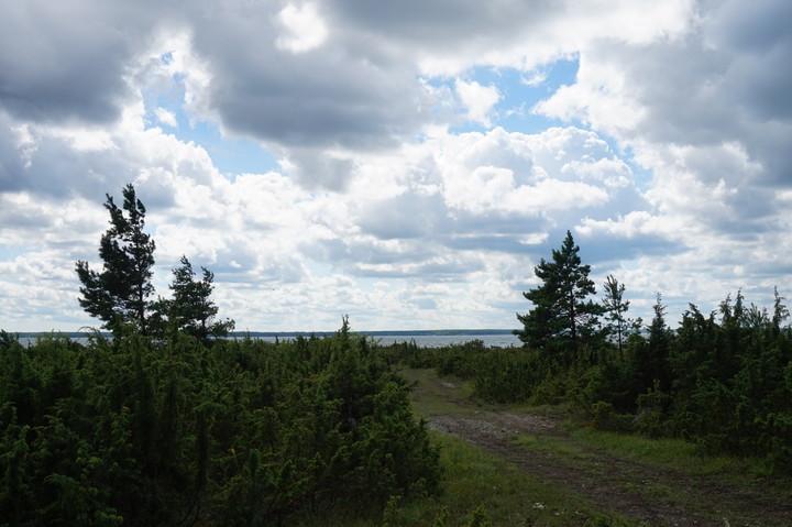 Saare maakonnale omaselt kadakane rannajoon. Foto: Karin Küünarpuu