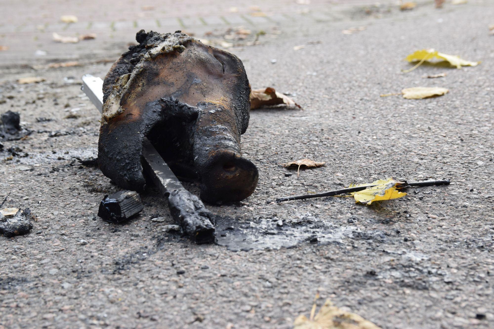 Tallinna kesklinnas põletati siga (häirivad pildid!)