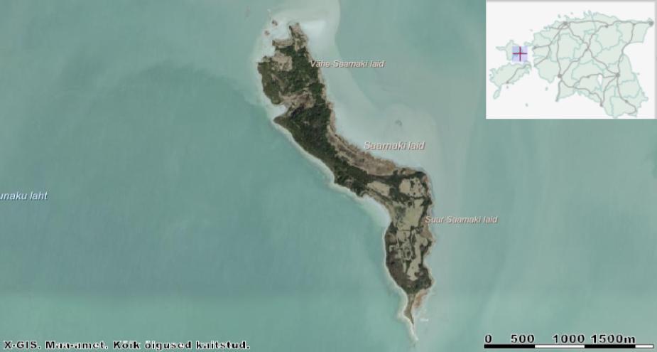Piklik ja kõverik Saarnaki laid oli veel paarsada aastat tagasi hoopiski kaks saart: Vähe-Saarnaki ja (Suur-)Saarnaki. Allikas: Maa-ameti Geoportaal