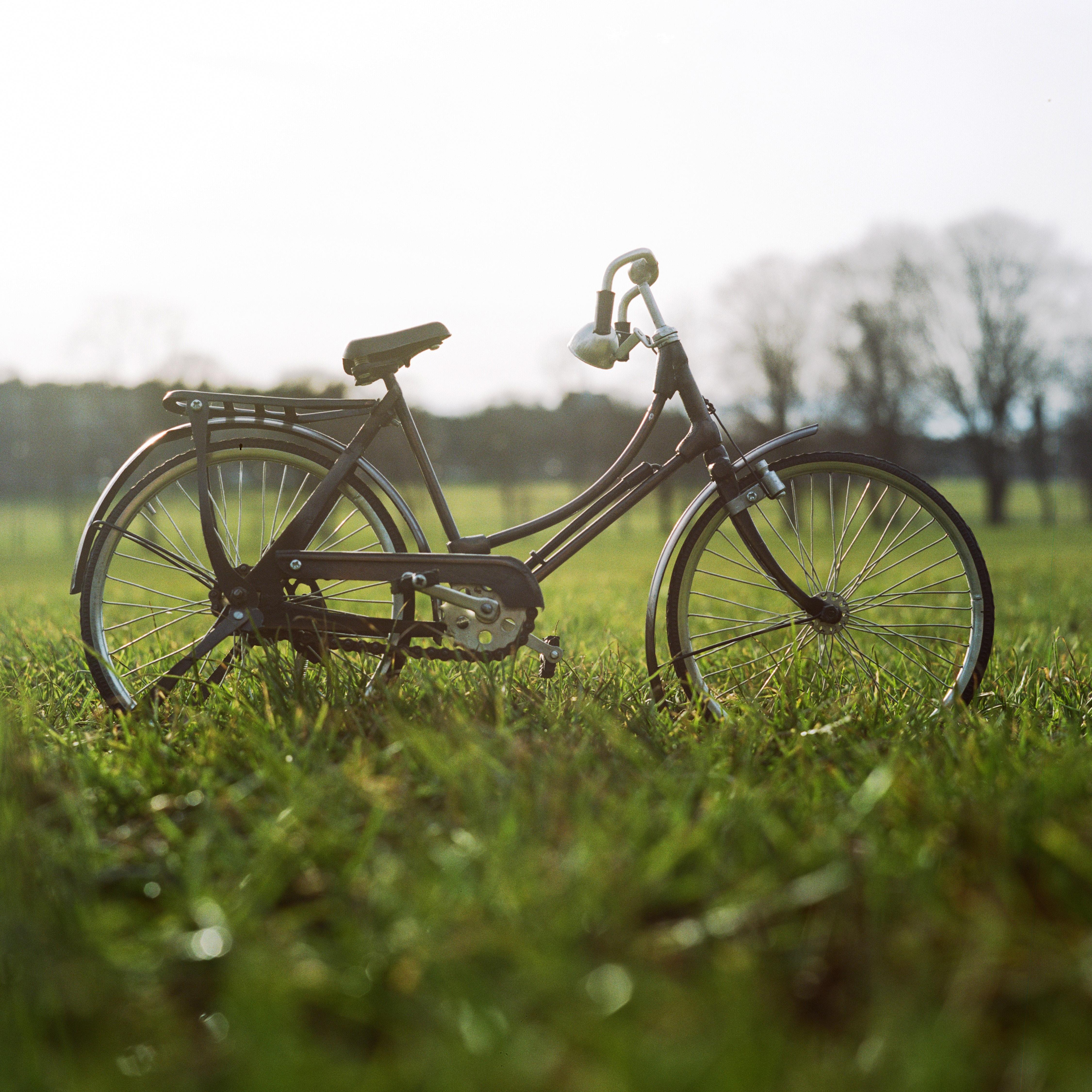 Millist hooldust vajab talveunest ärkav jalgratas?
