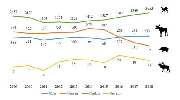 Liikluses hukkub aastas tuhandeid metsloomi (allikas: jahindusstatistika andmed, Keskkonnaagentuur). Kui sõralistega kokkupõrked on üsna sagedased, siis suurkiskjad hukkuvad teedel üsna harva. Näiteks eelmisel aastal hukkus liikluses viis karu, kolm hunti ja kaheksa ilvest, aasta varem aga üks karu, hunte ja ilveseid kolm.