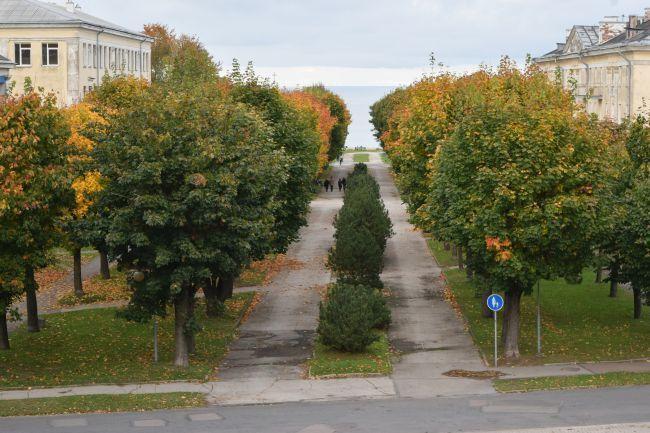 Pildistas Janek Jõgisaar, Bioneer.ee